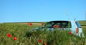 Auto im Feld
